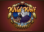 Play Wild Wolf Slots