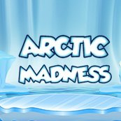 Play Arctic Madness Slots